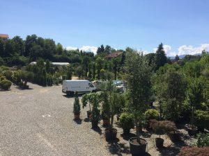 Servizio di manutenzione giardini Alpignano